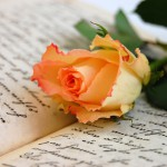 The five most popular Romance languages
