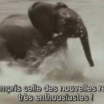 Canadian French subtitles for 'Giants of Leadership' training film.