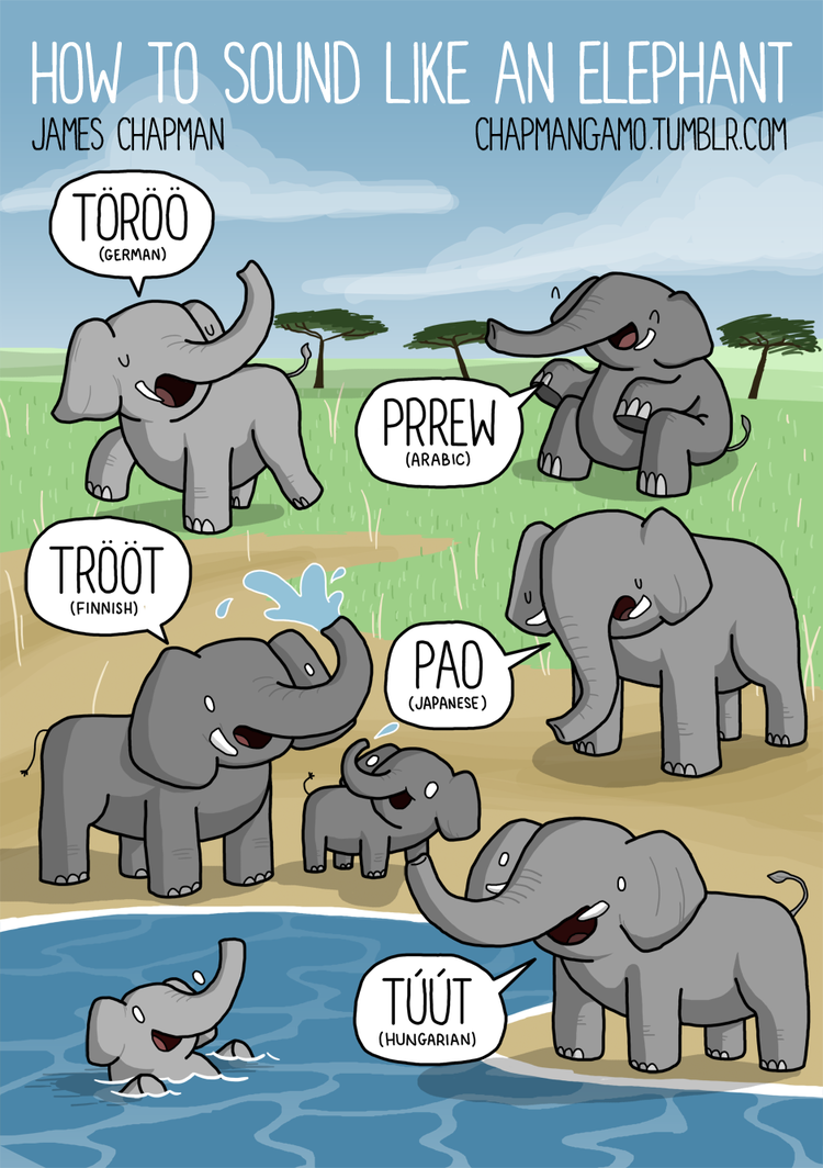 Elephant noises around the world