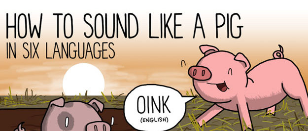 Animal Noises Around The World